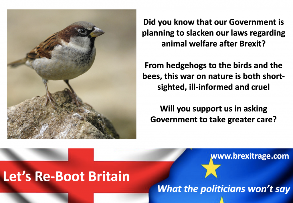 Did you know that our Government is planning to slacken our laws regarding animal welfare after Brexit?  From hedgehogs to the birds and the bees, this war on nature is both short-sighted, ill-informed and cruel  Will you support us in asking Government to take greater care?