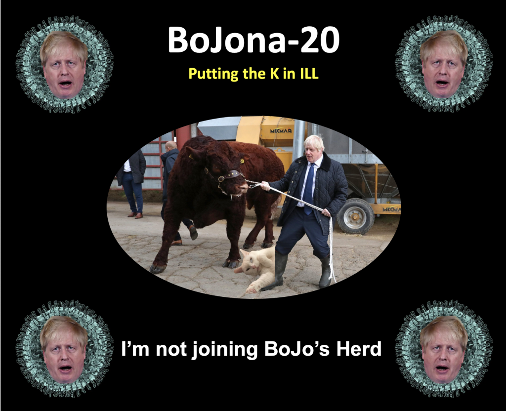 Bojona-20 - Putting the K in ILL