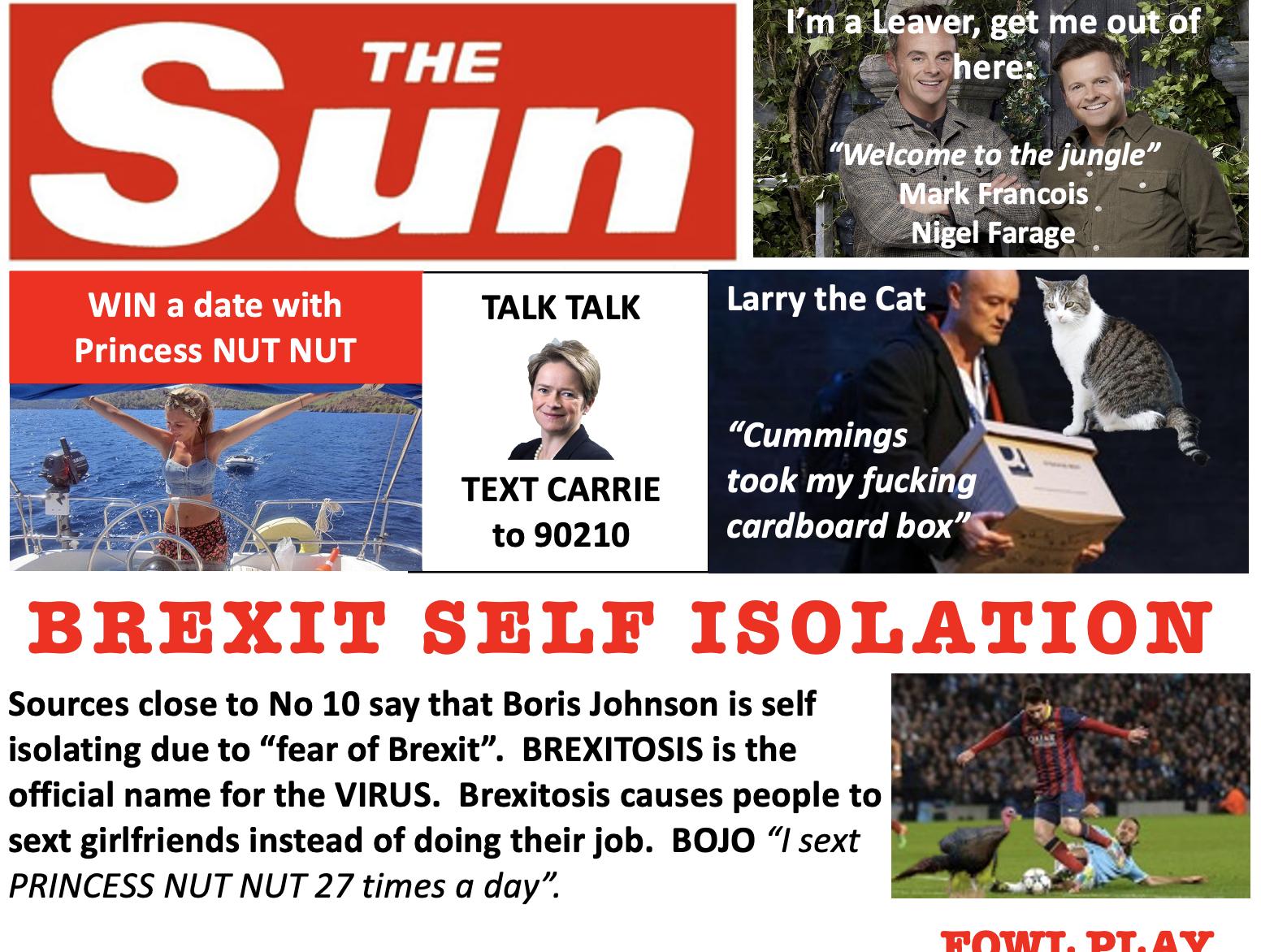 Brexit Self Isolation