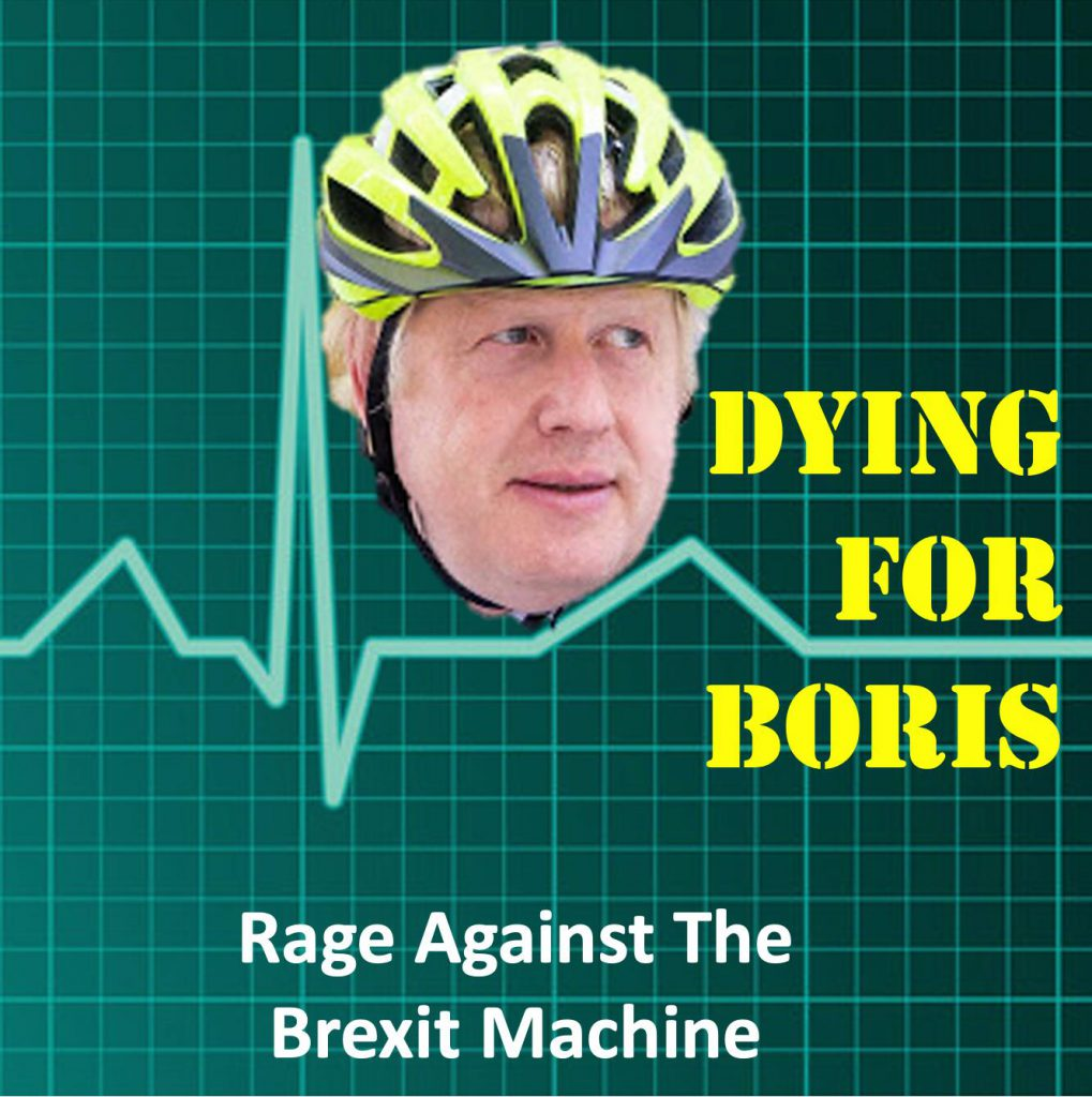 """Don't die for Boris.  Ask him to dye his hair and cancel Brexit"""
