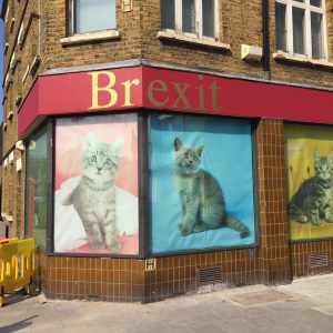 Shop and Stop Brexit